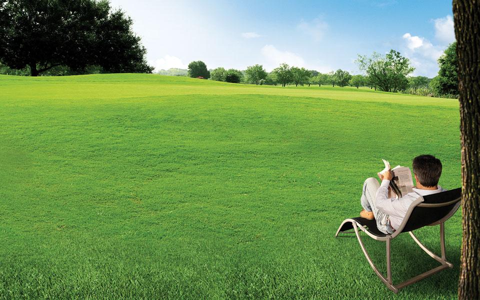 banner-wiper-grass